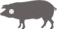Iberian Pork Cheek